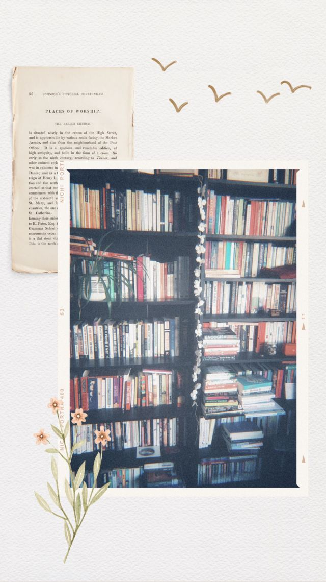 bookshelves full with books