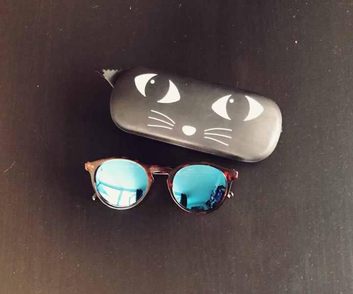 Sunski Sonnenbrille mit blauen Gläsern und einem Katzen-Brillenetui
