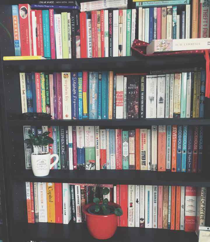 Romane und Pflanzen in einem Regal