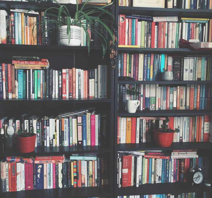 two bookshelves full with books and some plants