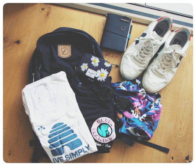 some shopping items displayed for you to take a look - shoes, bikini, sunglasses, shirts, backpack, wallet