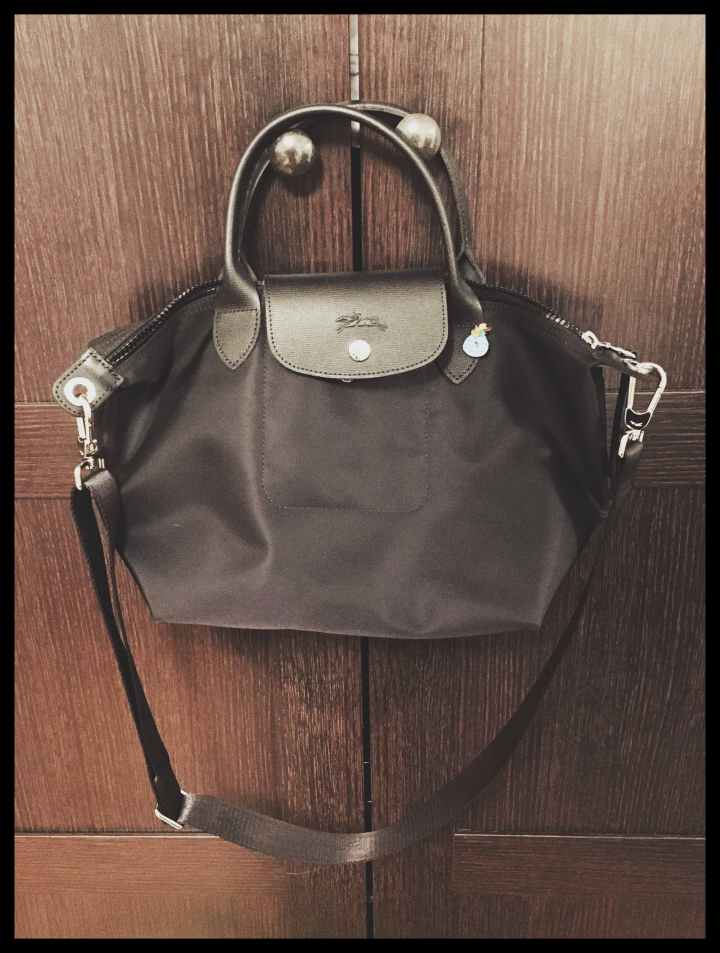 Longchamp Le Plaige neo small hanging on a door
